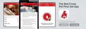 m27540138_763x260-pet-first-aid-app-p