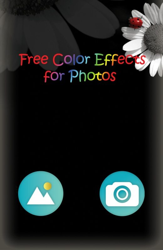 najgorsze aplikacje - Efekty Zdjęć